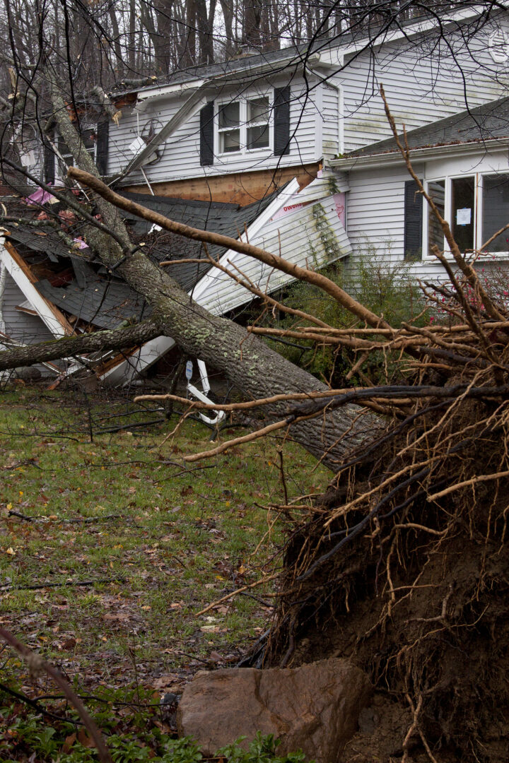 uprooted tree laying on damaged porch of house