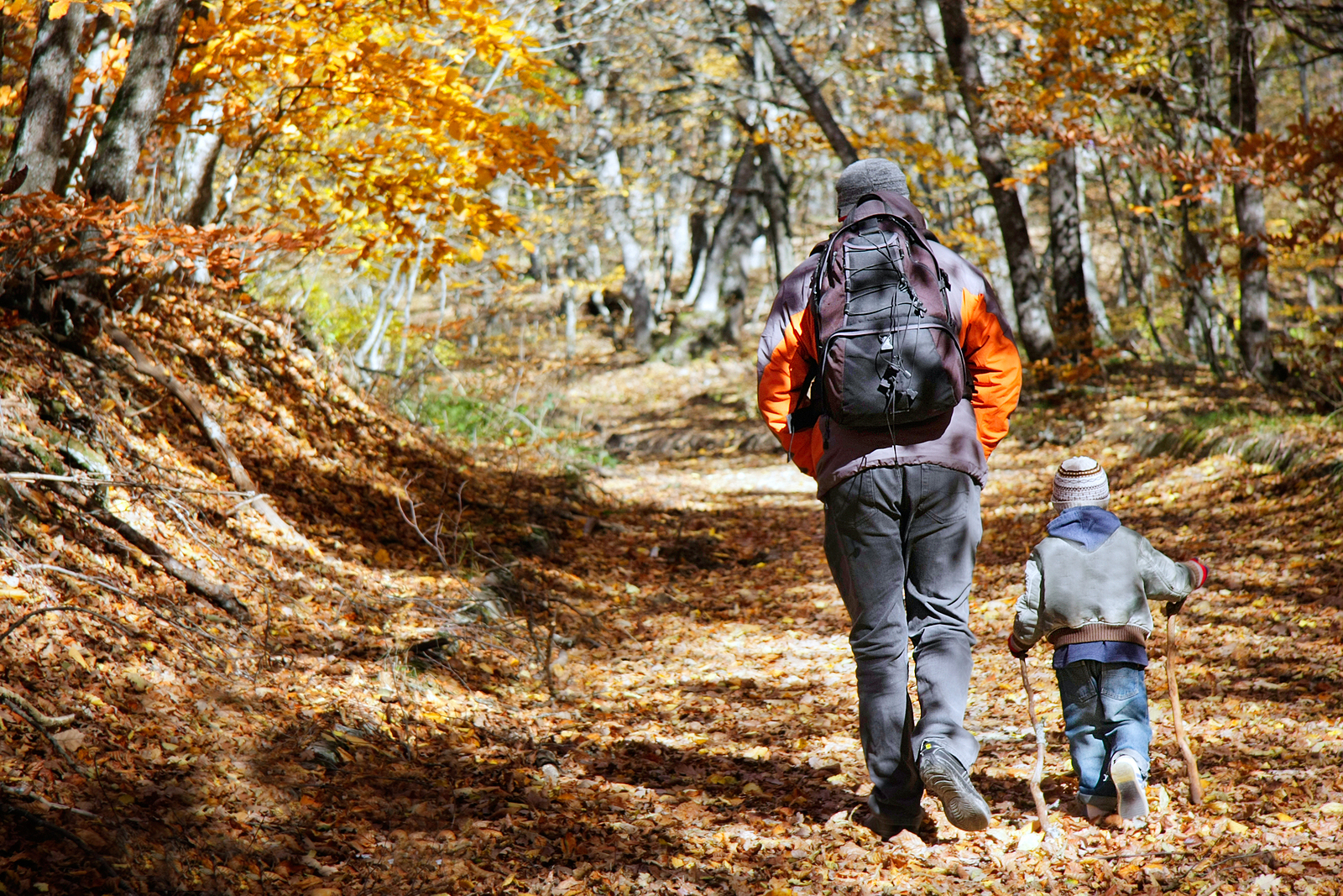 father hiking in woods with child