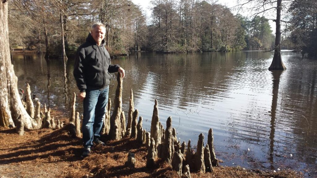Cypress trees in swamp with knees growing up from ground