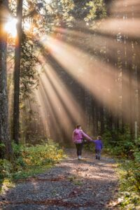 mom and son walking along path through woods with sun shining